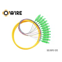 Pigtail Fiber 12 Core 9/125 Owire SC/APC 0.9mm (1.5 เมตร)